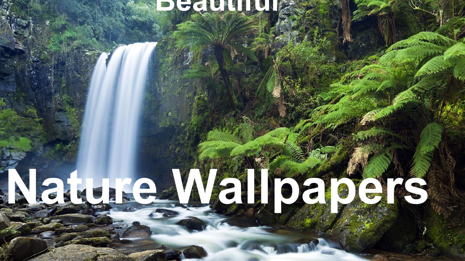 Nature Wallpapers And Background Editing For Android Apk Download