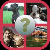US dogs Quiz icon