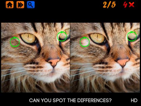 Spot the Differences 100 levels Hard screenshot 4