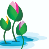 Blooming Buds Preschool icon