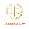 Law Made Easy! Common Law and Legal System biểu tượng