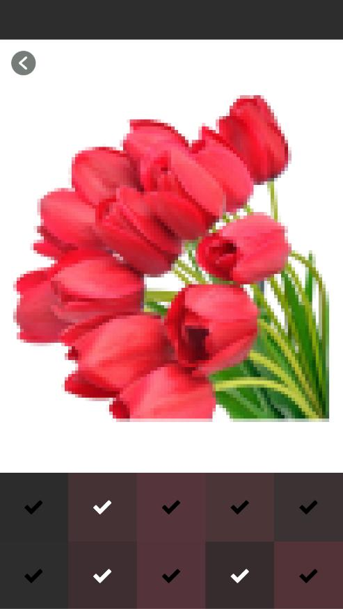 Tulip Flower Coloring Pages Color By Number For Android Apk Download