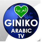 Giniko Arabic TV icon