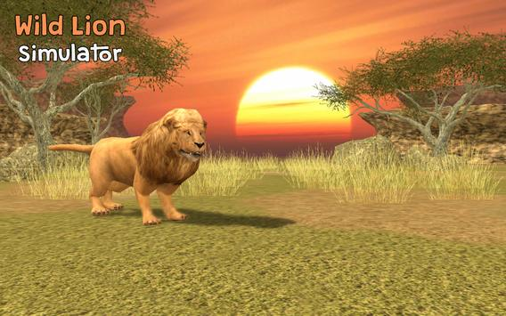 Wild Lion Simulator 3D screenshot 12