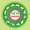 ikon TU VI TRỌN ĐỜI 2019