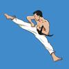 Mastering Taekwondo आइकन