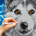 Cross-Stitch Masters