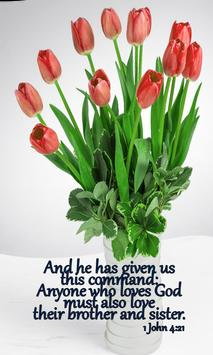 Bible Quotes on Love poster