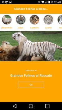 Grandes Felinos al Rescate screenshot 2