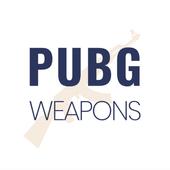 Weapons PUBG Stats Guide - Compare Guns icon