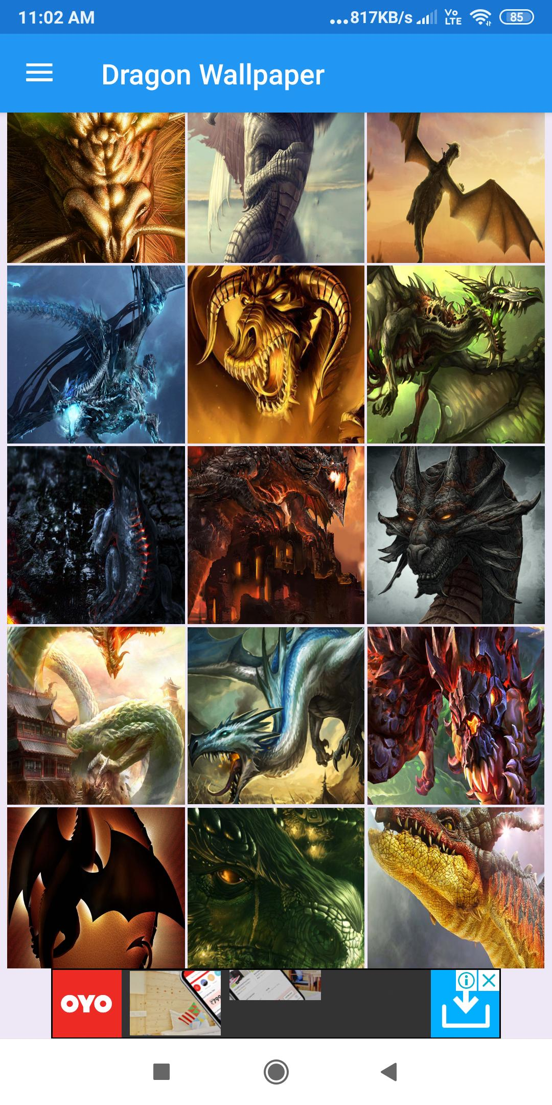 Dragon Wallpaper Hd Images Free Pics Download For Android Apk