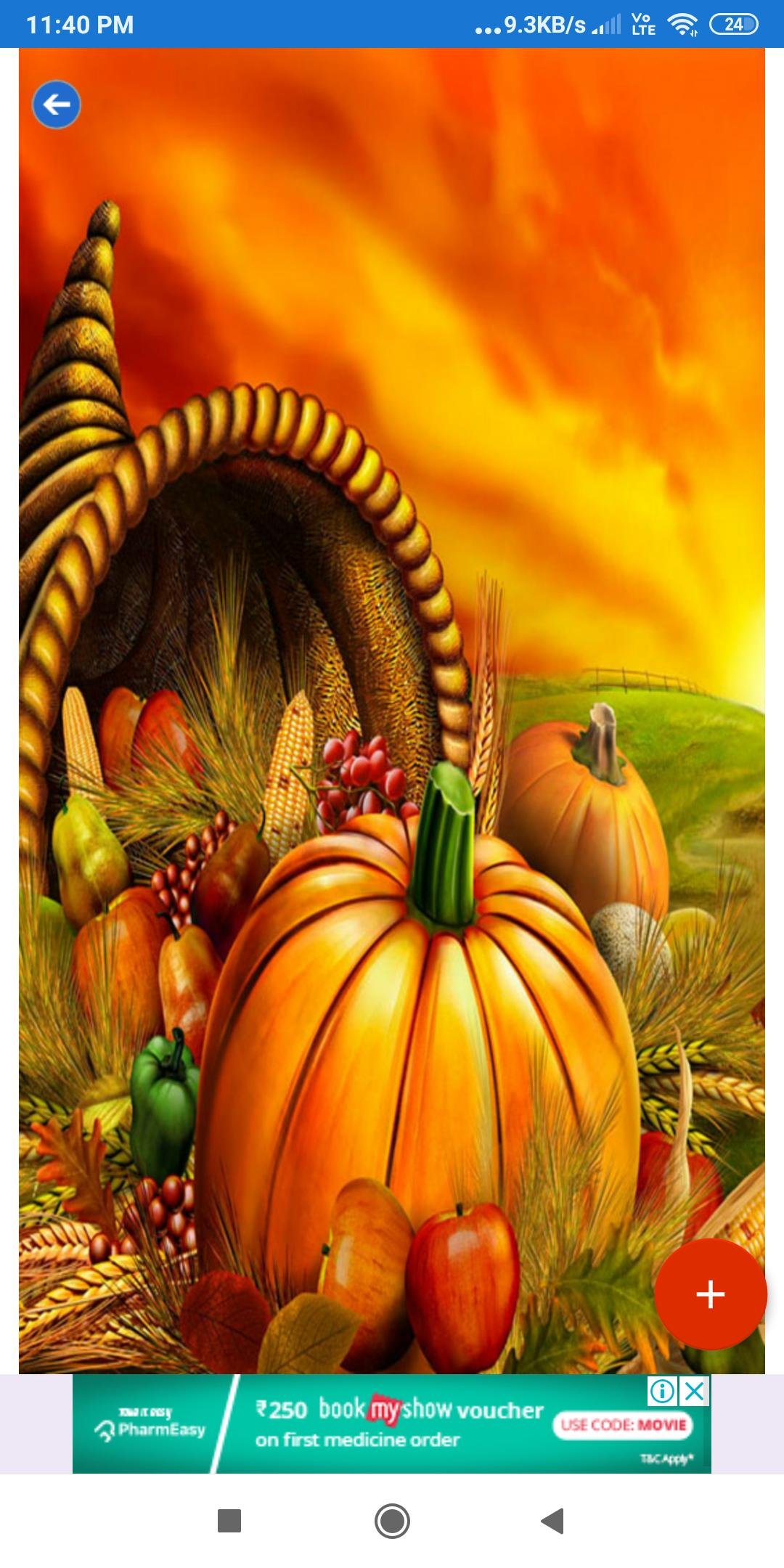 Thanksgiving Wallpaper Hd Images Free Download For Android