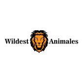 Wildest Animals icon