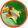Animobile - Animal Facts and Trivia icon