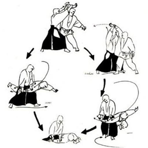 Aikido Technique For Android Apk Download