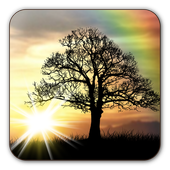 Sun Rise Free Live Wallpaper-icoon