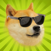 Flappy Doge icon