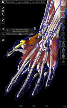 Essential Anatomy 3 for Orgs. screenshot 10
