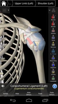 Essential Anatomy 3 for Orgs. screenshot 5