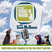 The Dog's Way icon