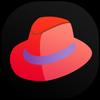 Sandiego Inc. icône