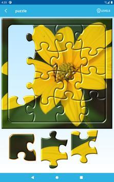 Puzzles 截图 13