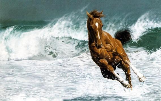 Horse Wallpapers screenshot 4