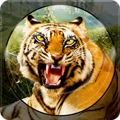 Forest Animal Hunting 2018 - 3D icon