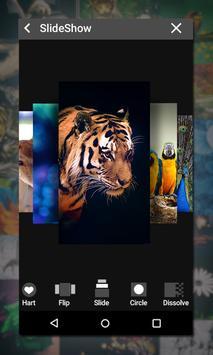 Gallery screenshot 12