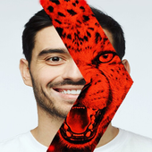 The Face Of The Red Tiger icon