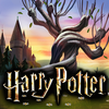 Harry Potter ikona