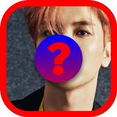 Kpop quiz-Guess the idol icon