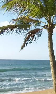 Foamy surf screenshot 1