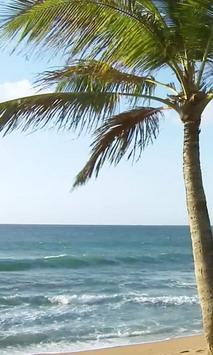 Foamy surf screenshot 2