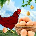 Advance Egg Catcher Surprise: Classic Chicken egg