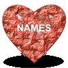 Nombres de prueba de amor icono