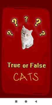 True False Trivia Cats quiz poster