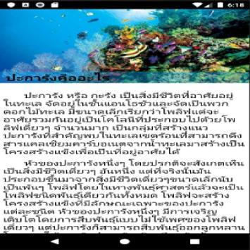 Coralapp poster