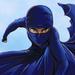 Burka Avenger 1.3 Apk Android