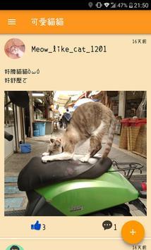 MeowMeow poster