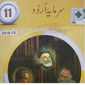 Urdu TextBook FSc-11 icon