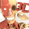 3D Anatomy+ biểu tượng