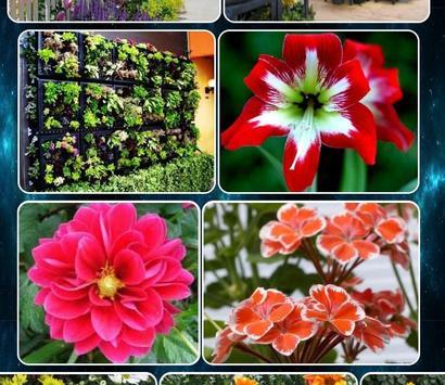 various flower plants screenshot 3