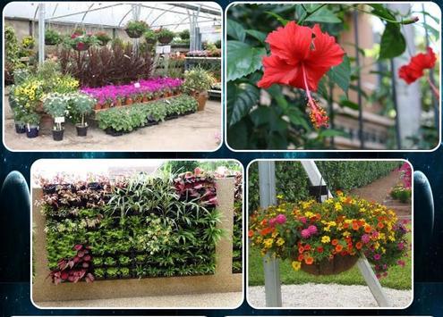 various flower plants screenshot 5