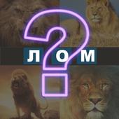 4 сурт 1 дош icon