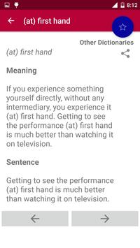Offline Idioms & Phrases Dictionary screenshot 4