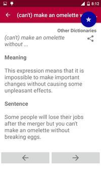 Offline Idioms & Phrases Dictionary screenshot 5