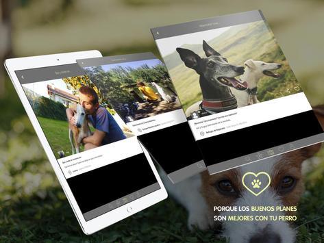 Dog Vivant - Planes con perros screenshot 10