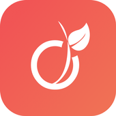 Viadeo, offres d'emploi & avis sur les entreprises icône