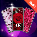 Live Wallpapers - 3D 4D HD Background Wallpaper 4K